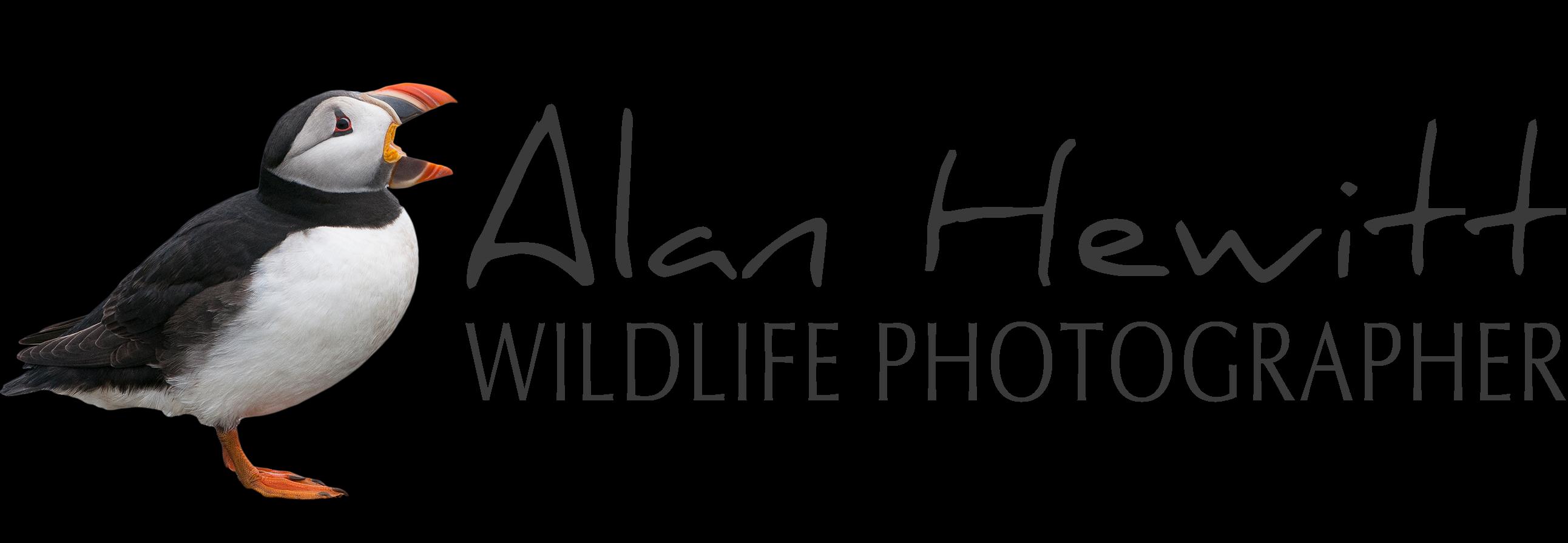 Alan Hewitt Photography
