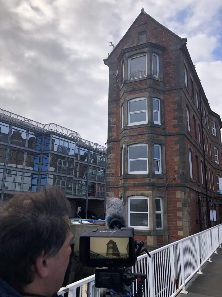 Filming kittiwakes around the North Shields Ferry Landing where their traditional nesting site has been covered in bird-deterrent netting.