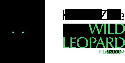 Kaleel Zibe - Wild Leopard Films
