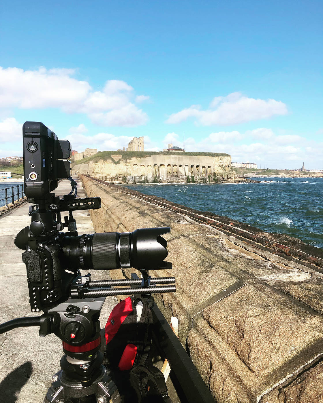 Filming rafting kittiwakes on the north side of Tynemouth Pier