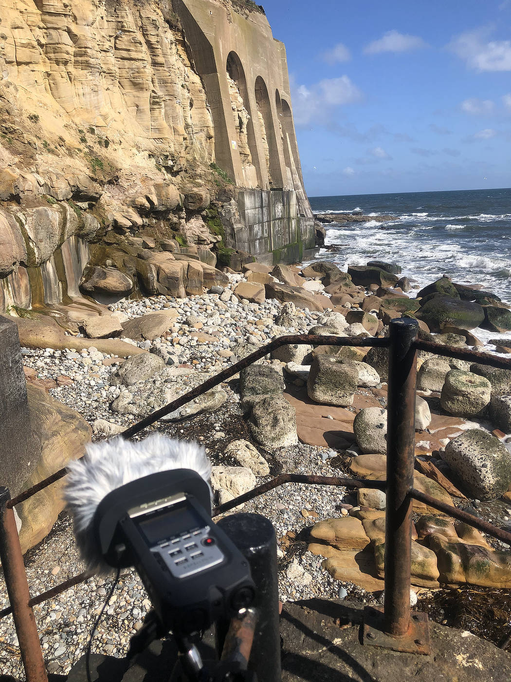 Recording the sound of the waves and the nesting kittiwakes at the bottom of Tynemouth Priory cliffs.
